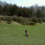 Taking a break clearing trees
