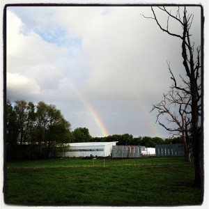 rain, photo, rainbow, family farm, organic, minnesota, mn,