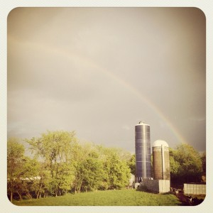 rainbow, rain, farm, silos, photo, family farm,