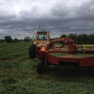tractor, family farm, minnesota, dairy, organic, hay