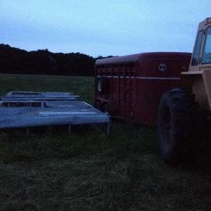 chickens, free range, pasture raised, organic, minnesota, minneapolis, family farm