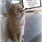 Walter Croncat Reports…