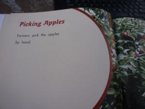 free teacher resources, letter A, apple lesson, preschool