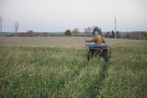 minnesota, minneapolis, farm, family farm, farm game, factory farm