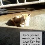 Walter Croncat on Labor Day