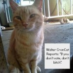 Walter CronCat Reports on Election Day
