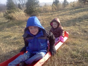 minnesota, meat for sale, family farm, organic, kids, farm kids