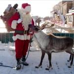 R is for Reindeer: Free Teacher Resource