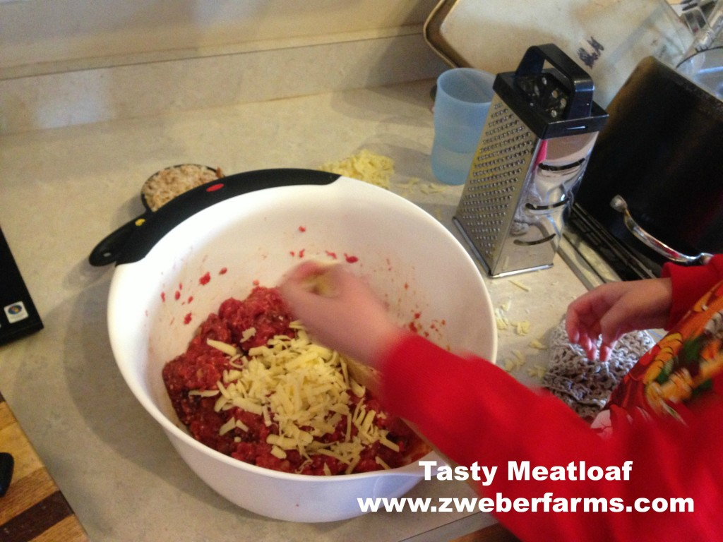 meatloaf recipe, all beef, beef for sale, minnesota, mn, organic, grass fed