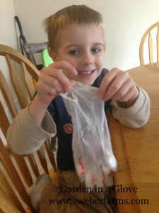 Garden in a glove via Zweberfarms.com, farm, activity, lesson, free, plant cycle, teacher,