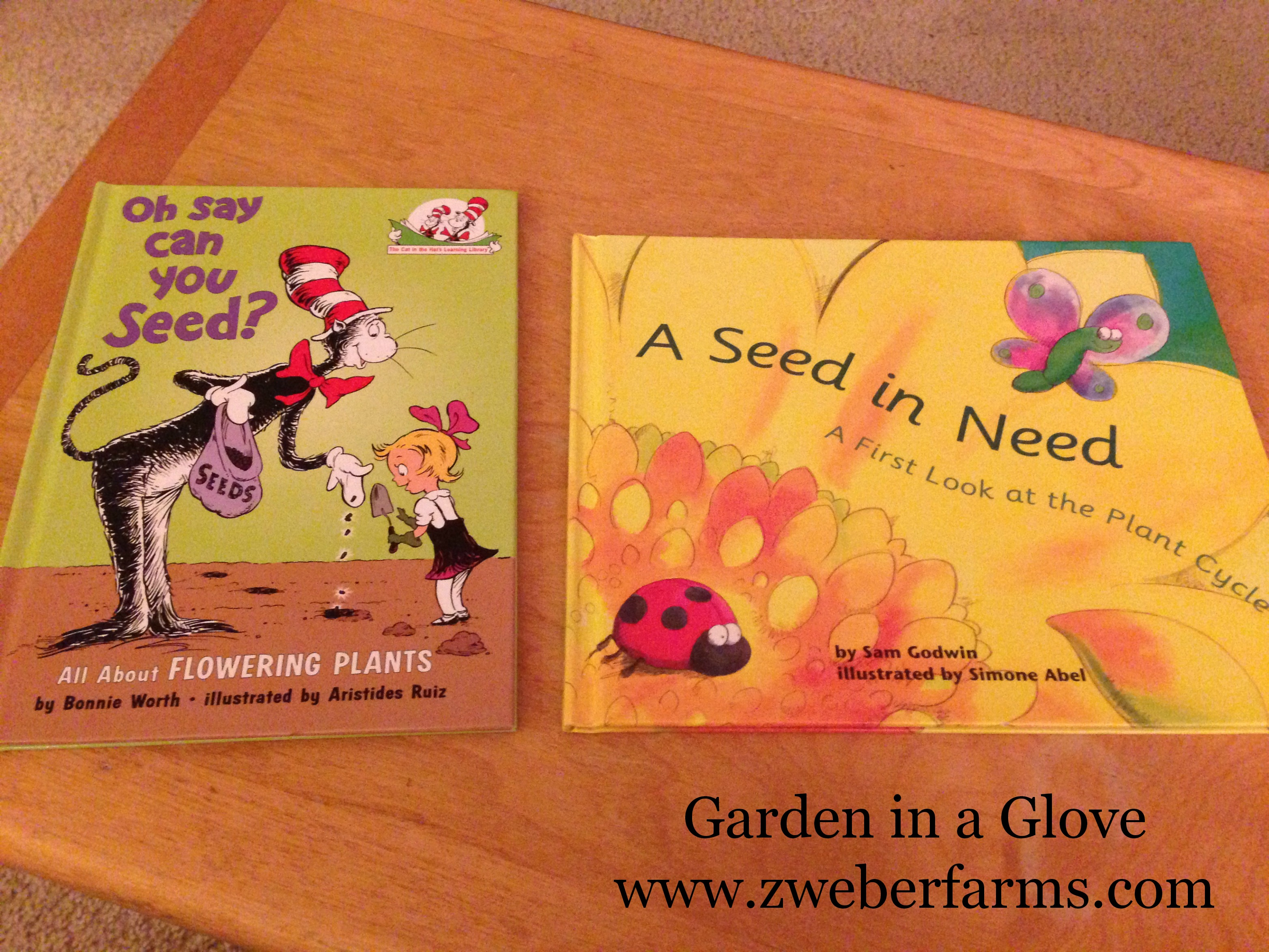 Free Farm Lesson Plans Garden in a Glove Zweber Family Farms – Gardening Lesson Plans