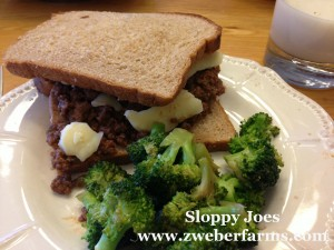 sloppy joe recipe, food blog, mn, minnesota, organic, grass fed, humane, local food, minneapolis,