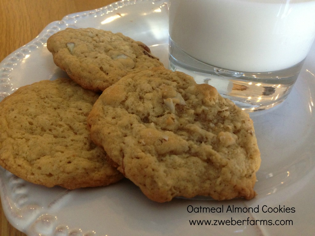 oatmeal almond cookie recipe, eggs for sale, mn, minnesota, organic