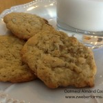 Oatmeal Almond Cookie Recipe