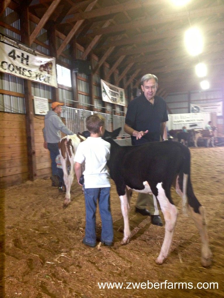 Dakota County Fair 2013 via zweberfarms.com