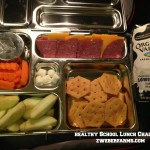 Healthy School Lunch Challenge-Day 2