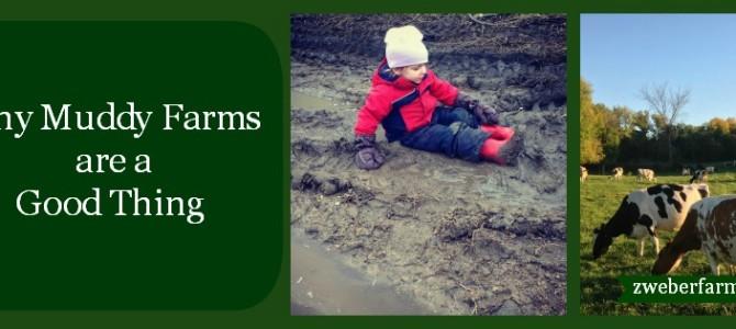 Muddy Farms