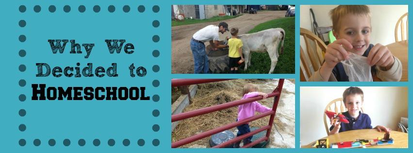 Why we decided to homeschool via zweberfarms.com